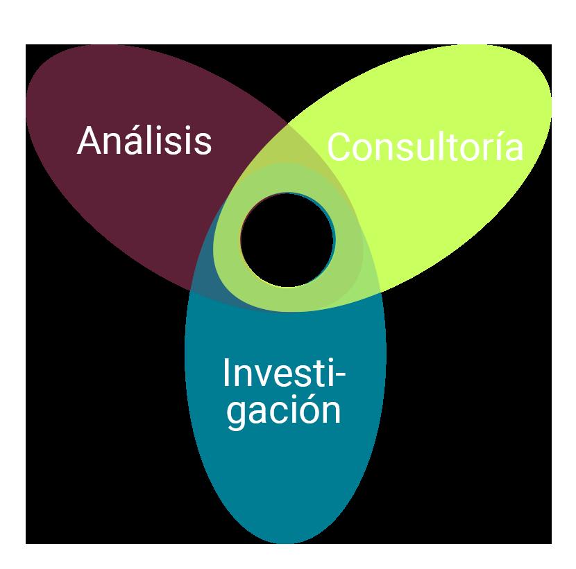 Equipo Ameba research experiencia amplia desde 3 ámbitos