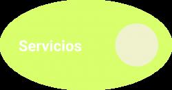 Ameba investigación sector servicios